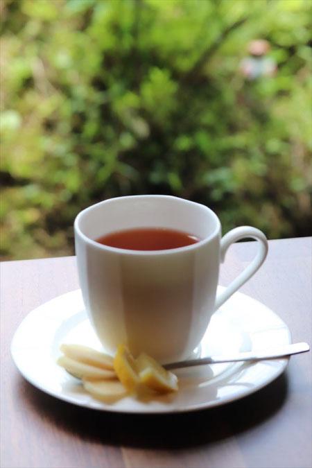 しょうがびわ茶