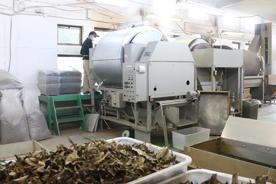 びわ茶工場