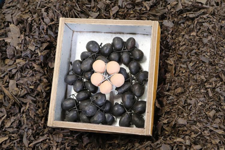 トルマリン石による高温焙煎