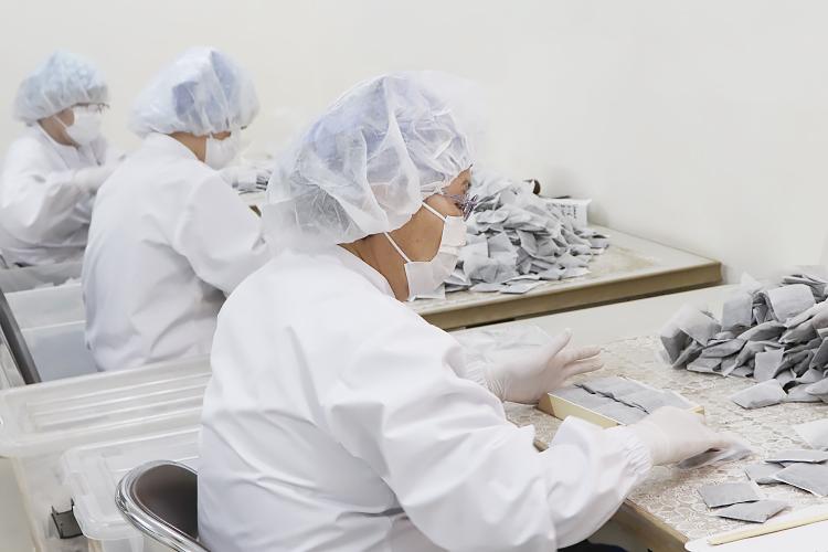 ねじめびわ茶の生産工程